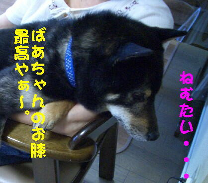 20080630_2