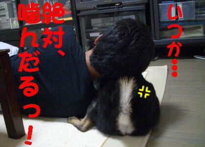 20080704_3