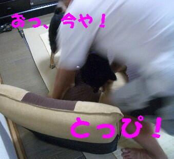 20080707_2_2