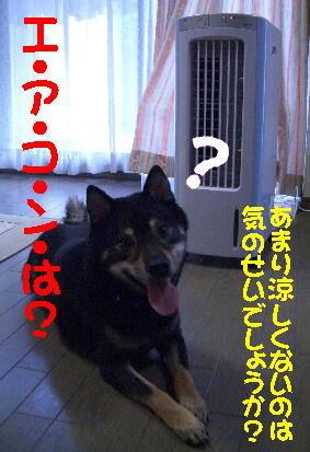20080709_7
