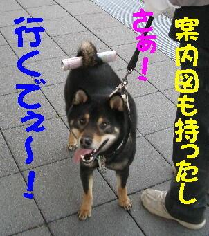 20080710_1