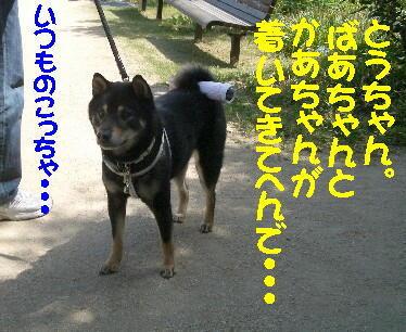 20080710_3
