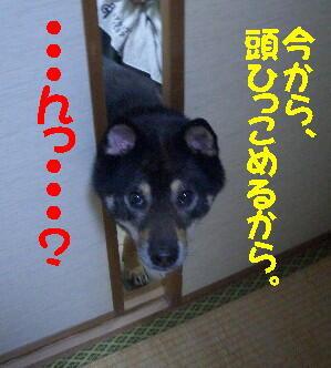 20080711_4