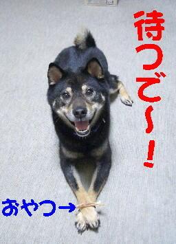 20080713_4