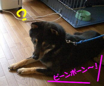 20080714_3