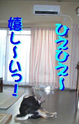 20080714_5