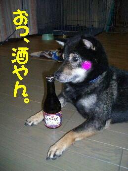 20080717_2