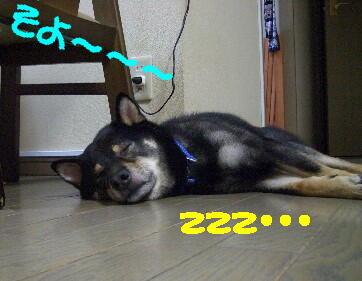 20080720_1
