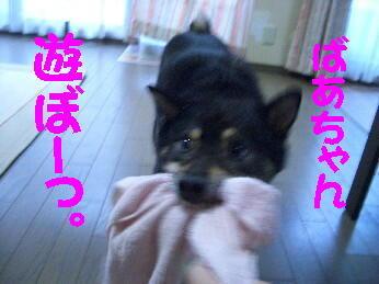 20080725_1