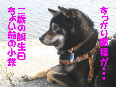 20080726_3