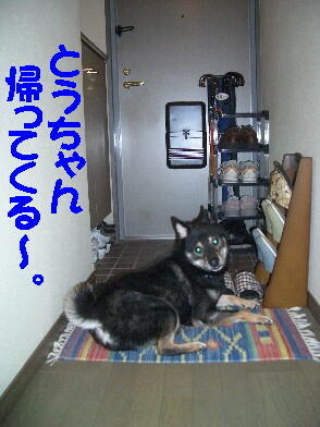 20080809_1