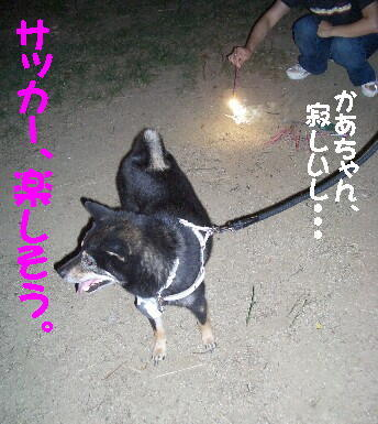 20080814_2