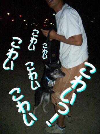 20080814_4