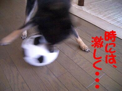 20080815_2