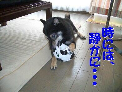 20080815_3_2