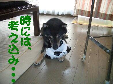 20080815_4