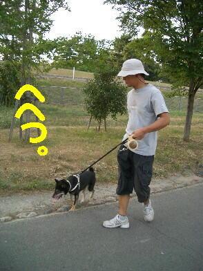 20080819_1