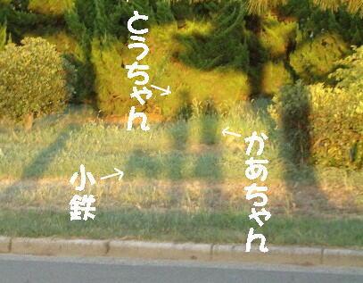 20080819_14_2