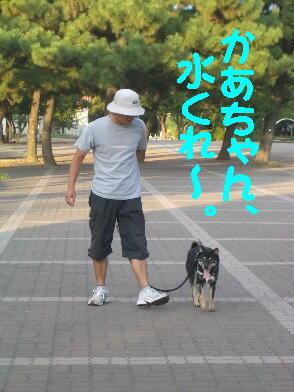 20080819_6