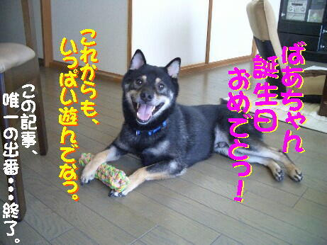 20080820_9
