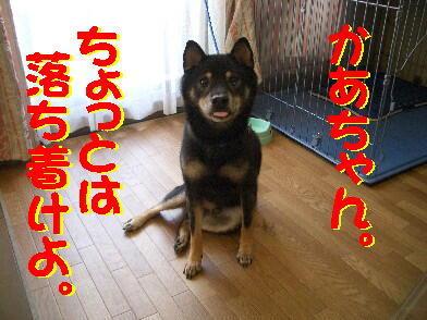 20080901_2