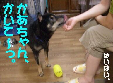 20080902_2_2