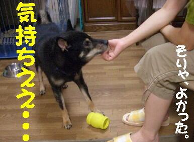 20080902_3_2