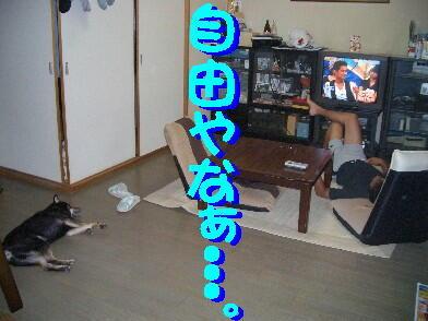 20080910_9