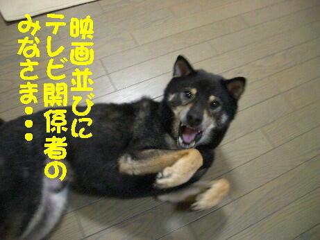 20080912_1