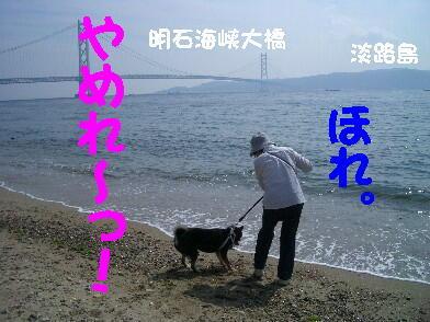 20080920_10