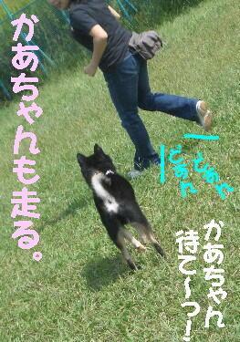 20080922_3