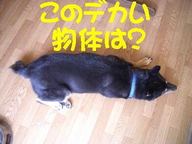 20080923_2