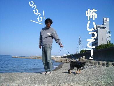 20080925_3