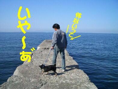 20080925_4