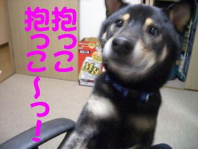 20081001_3