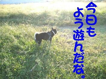 20081021_15