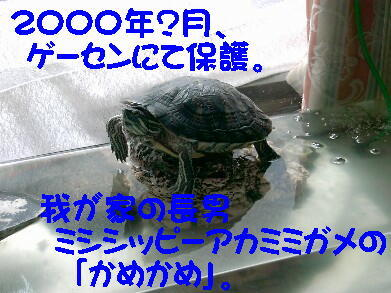 20081024_1_2