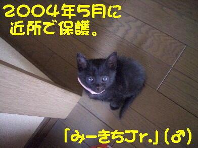 20081024_2