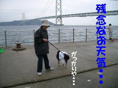 20081031_2