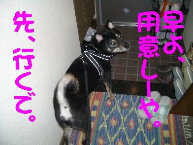 20081103_4