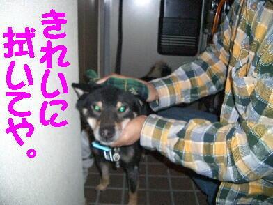 20081115_2