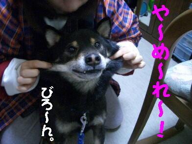 20090108_2