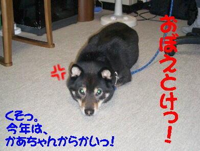 20090108_3