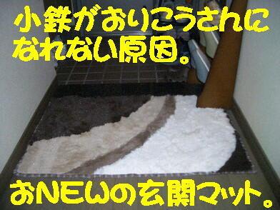 20090119_1_2