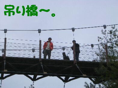20090306_3