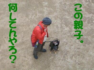 20090306_5