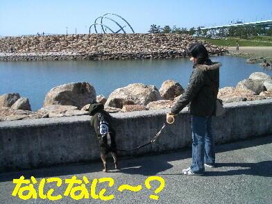 20090328_13