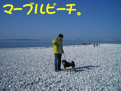 20090328_14