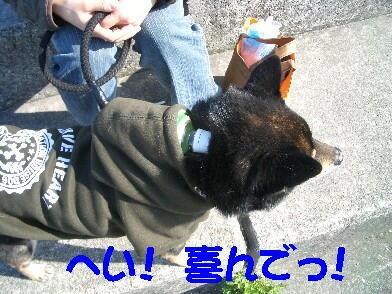 20090328_18