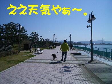 20090328_6